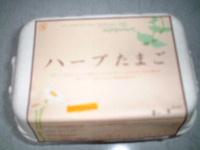 0529tamago.JPG